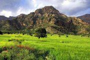 نوروز فرصتی برای سر و سامان دادن به منابع طبیعی کشور