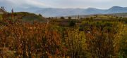 پاییز هزار رنگ میشخاص ایلام، باید آنجا بود و در طبیعت پاییزی اش جاری شد